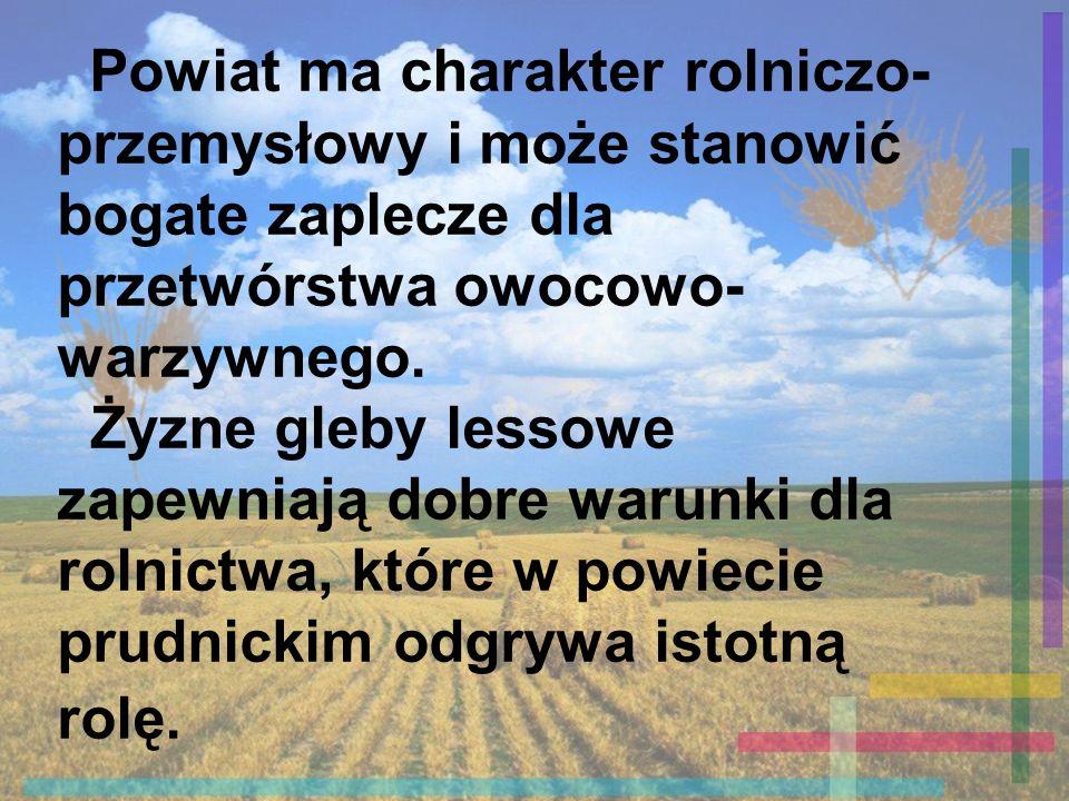 Starostwo Powiatowe w Prudniku - 48-200 Prudnik, ul.