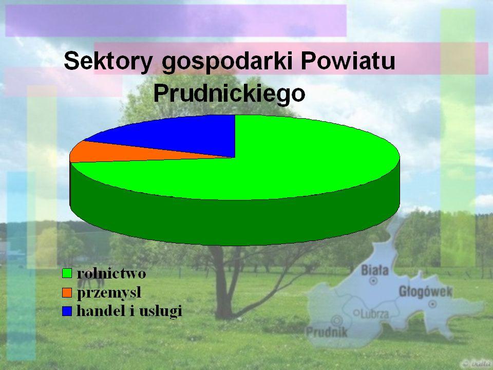 Dogodne położenie powiatu prudnickiego na skrzyżowaniu szlaków drogowych i kolejowych zapewnia dobre połączenie z dużymi ośrodkami gospodarczymi (Opole, Wrocław, Legnica) oraz Republiką Czeską.