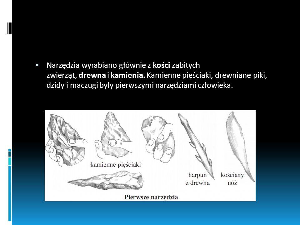 Narzędzia wyrabiano głównie z kości zabitych zwierząt, drewna i kamienia. Kamienne pięściaki, drewniane piki, dzidy i maczugi były pierwszymi narzędzi