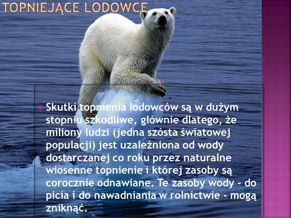 Skutki topnienia lodowców są w dużym stopniu szkodliwe, głównie dlatego, że miliony ludzi (jedna szósta światowej populacji) jest uzależniona od wody
