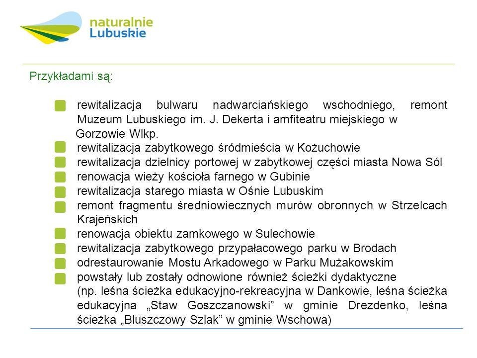 Przykładami są: rewitalizacja bulwaru nadwarciańskiego wschodniego, remont Muzeum Lubuskiego im.