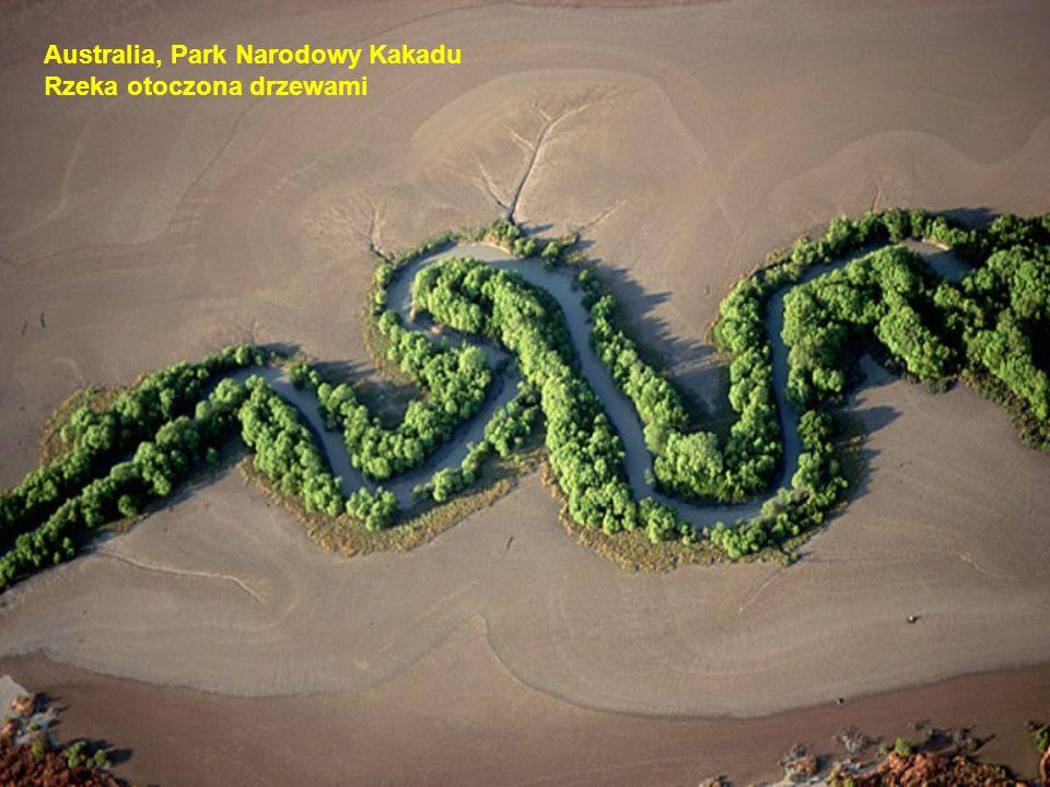 Australia, Park Narodowy Kakadu Rzeka otoczona drzewami