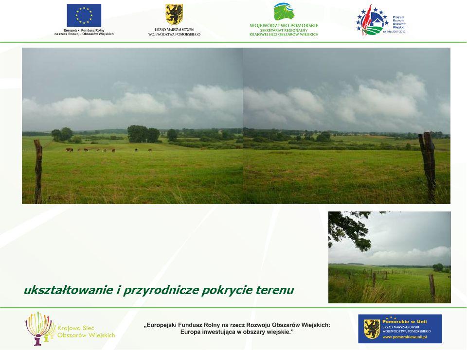 Lokalizacja, wielkość i kształt siedliska bez związku z cechami krajobrazu zalecenia projektowe
