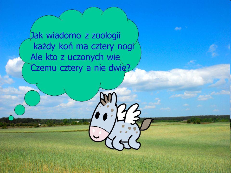 Jak wiadomo z zoologii każdy koń ma cztery nogi Ale kto z uczonych wie Czemu cztery a nie dwie?