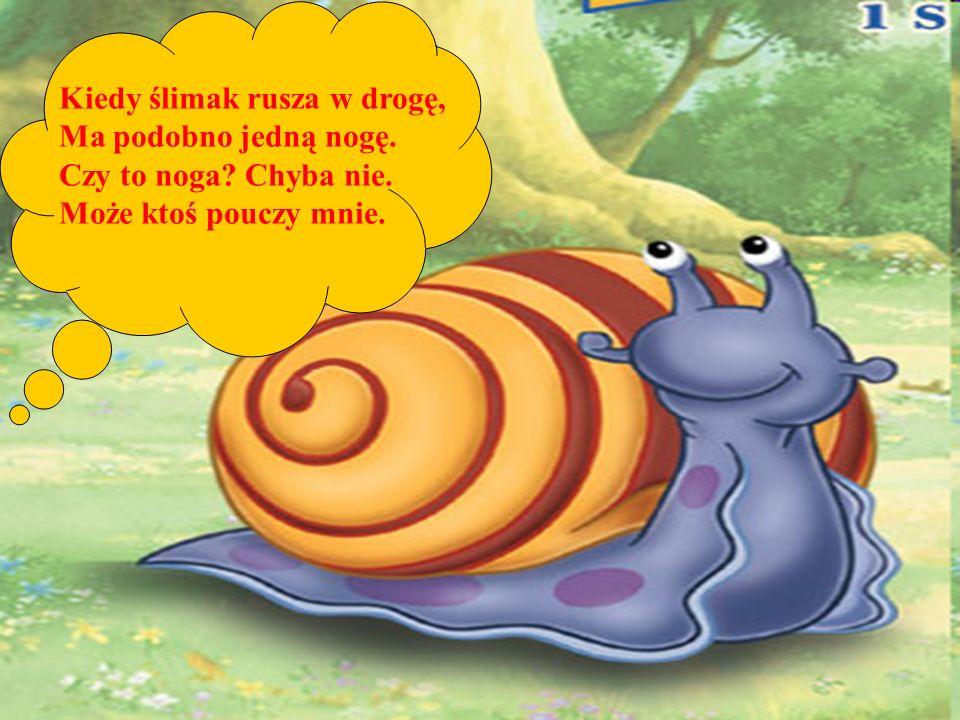 Kiedy ślimak rusza w drogę, Ma podobno jedną nogę. Czy to noga? Chyba nie. Może ktoś pouczy mnie.
