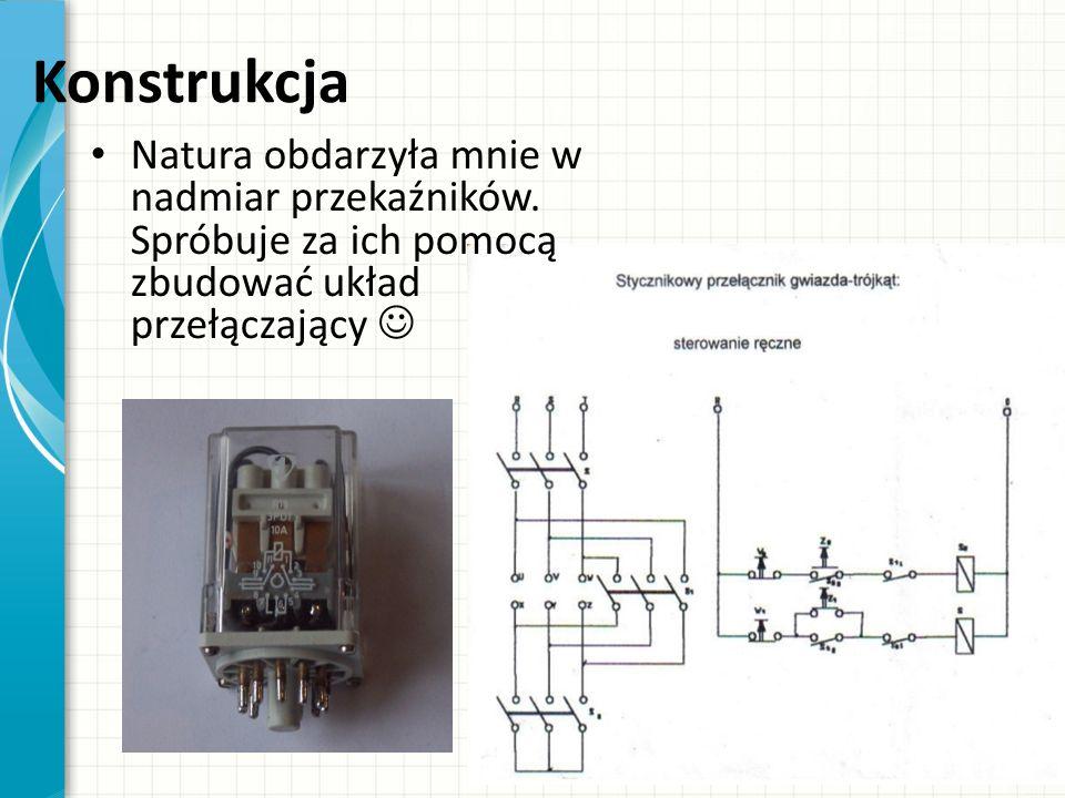 Konstrukcja Natura obdarzyła mnie w nadmiar przekaźników. Spróbuje za ich pomocą zbudować układ przełączający
