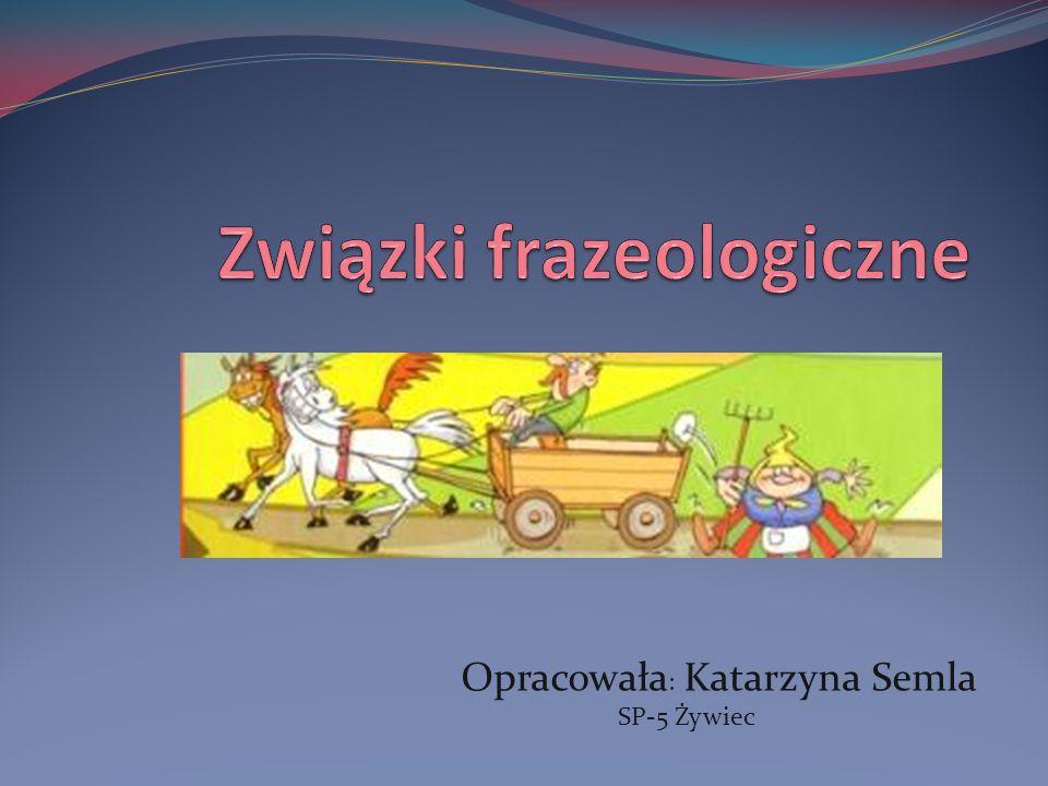 Opracowała : Katarzyna Semla SP-5 Żywiec