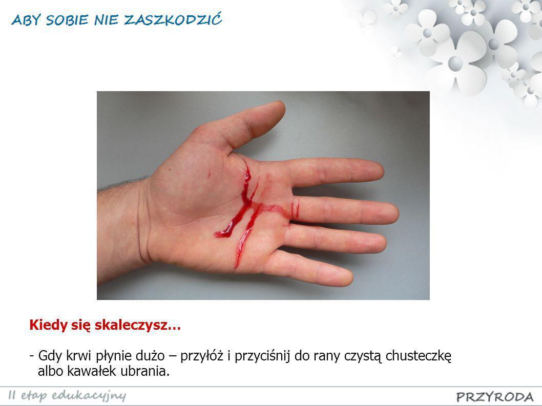 Kiedy się skaleczysz… - Gdy krwi płynie dużo – przyłóż i przyciśnij do rany czystą chusteczkę albo kawałek ubrania.