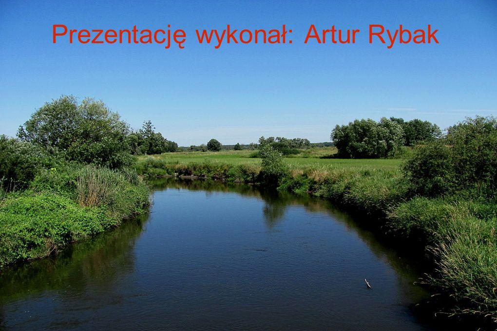 Prezentację wykonał: Artur Rybak