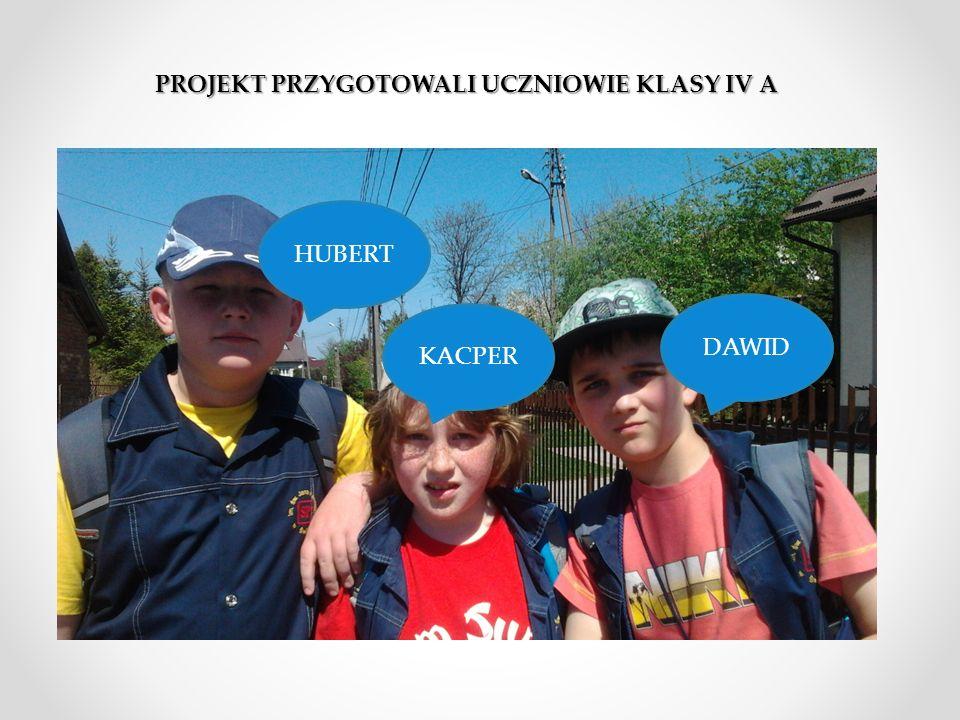 UTWÓR Hymn do św. Stanisława Kostki Muzyka: M. Nierubiec Wykonawca: Grzegorz Wilk Słowa: tradycyjne