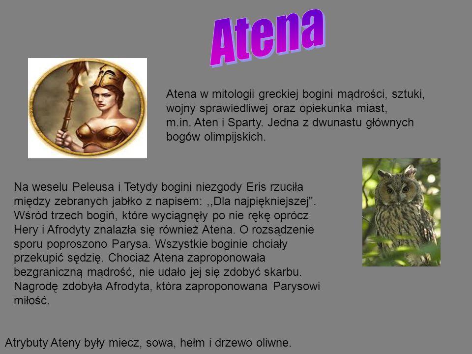 Atena w mitologii greckiej bogini mądrości, sztuki, wojny sprawiedliwej oraz opiekunka miast, m.in. Aten i Sparty. Jedna z dwunastu głównych bogów oli