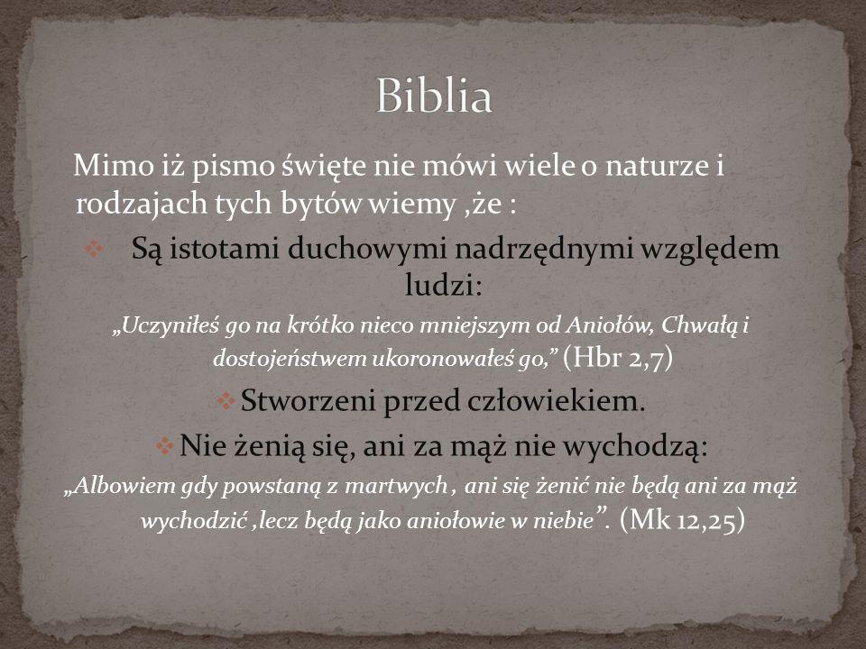 Mimo iż pismo święte nie mówi wiele o naturze i rodzajach tych bytów wiemy,że : Są istotami duchowymi nadrzędnymi względem ludzi: Uczyniłeś go na krót