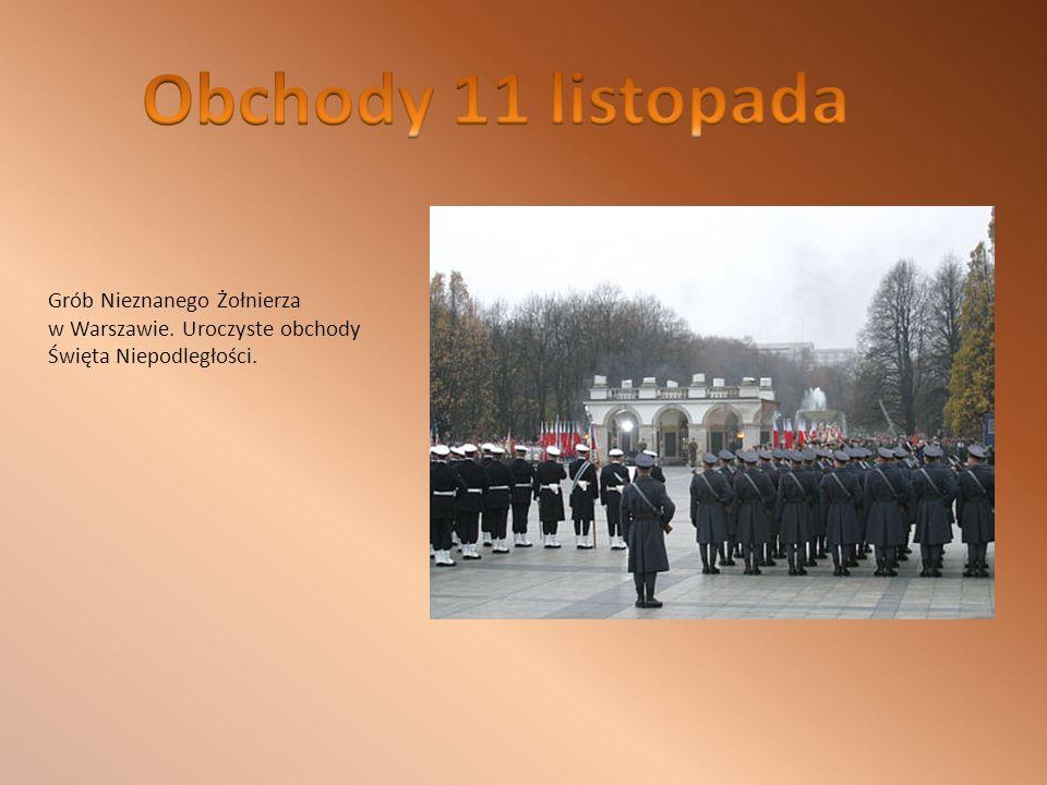 Grób Nieznanego Żołnierza w Warszawie. Uroczyste obchody Święta Niepodległości.