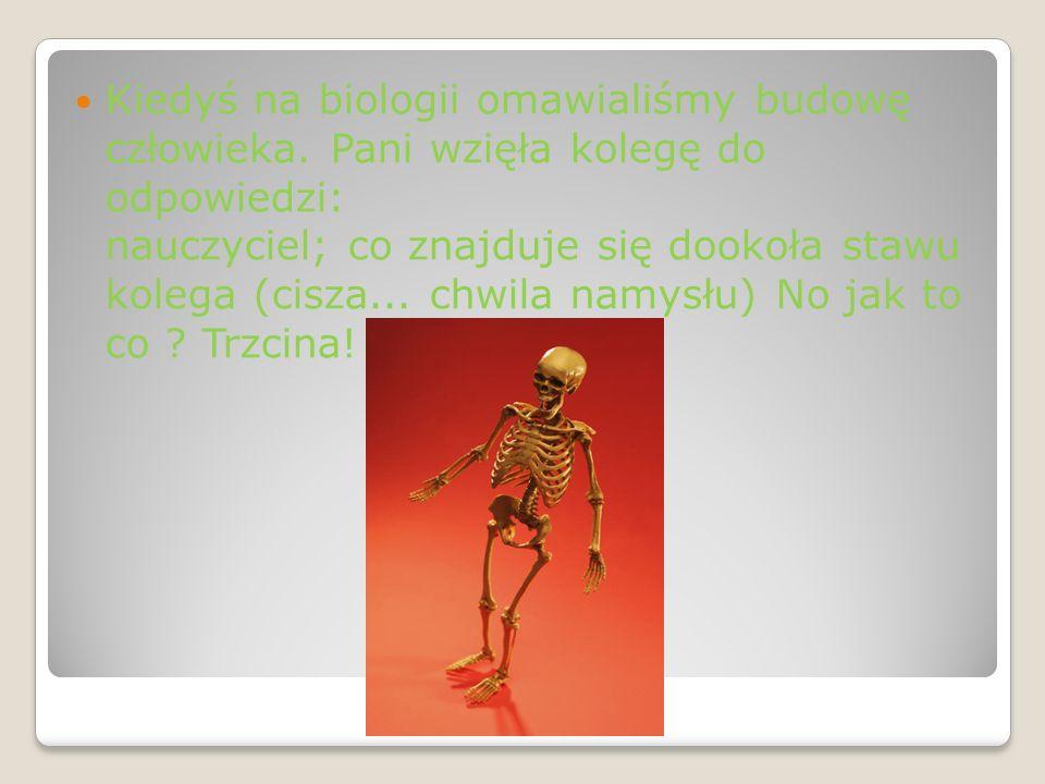 Kiedyś na biologii omawialiśmy budowę człowieka.