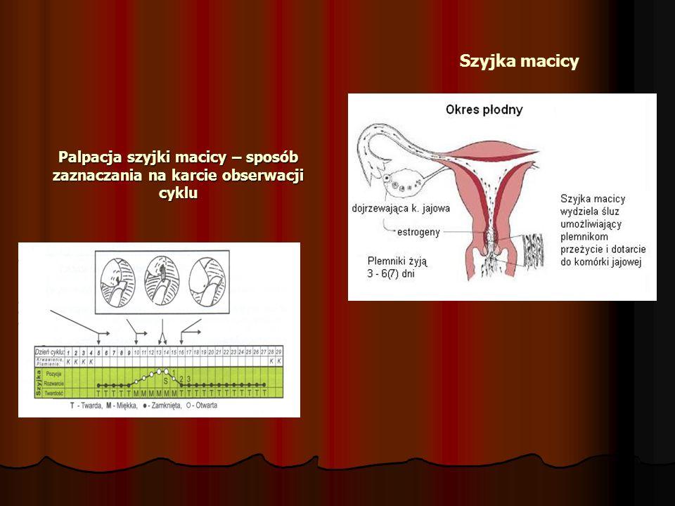 Palpacja szyjki macicy – sposób zaznaczania na karcie obserwacji cyklu Szyjka macicy