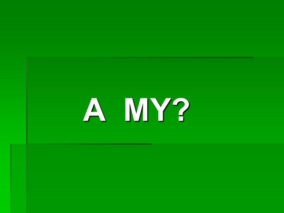 A MY?
