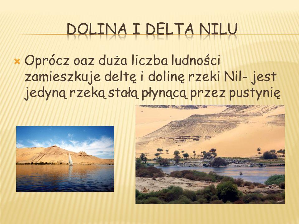 Oprócz oaz duża liczba ludności zamieszkuje deltę i dolinę rzeki Nil- jest jedyną rzeką stałą płynącą przez pustynię