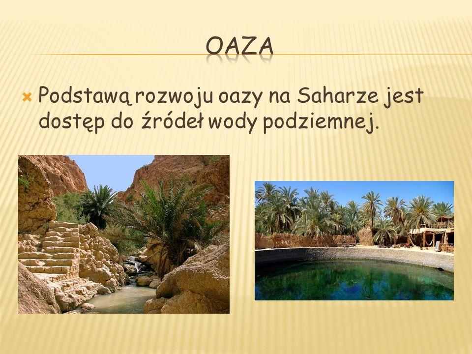 Podstawą rozwoju oazy na Saharze jest dostęp do źródeł wody podziemnej.