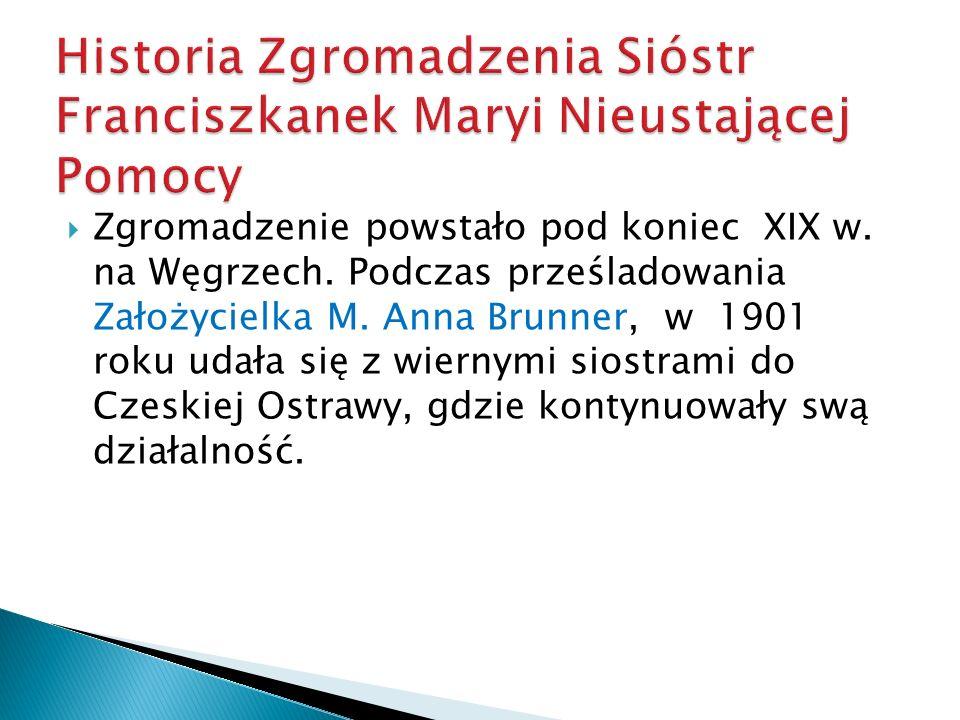 Zgromadzenie powstało pod koniec XIX w. na Węgrzech. Podczas prześladowania Założycielka M. Anna Brunner, w 1901 roku udała się z wiernymi siostrami d