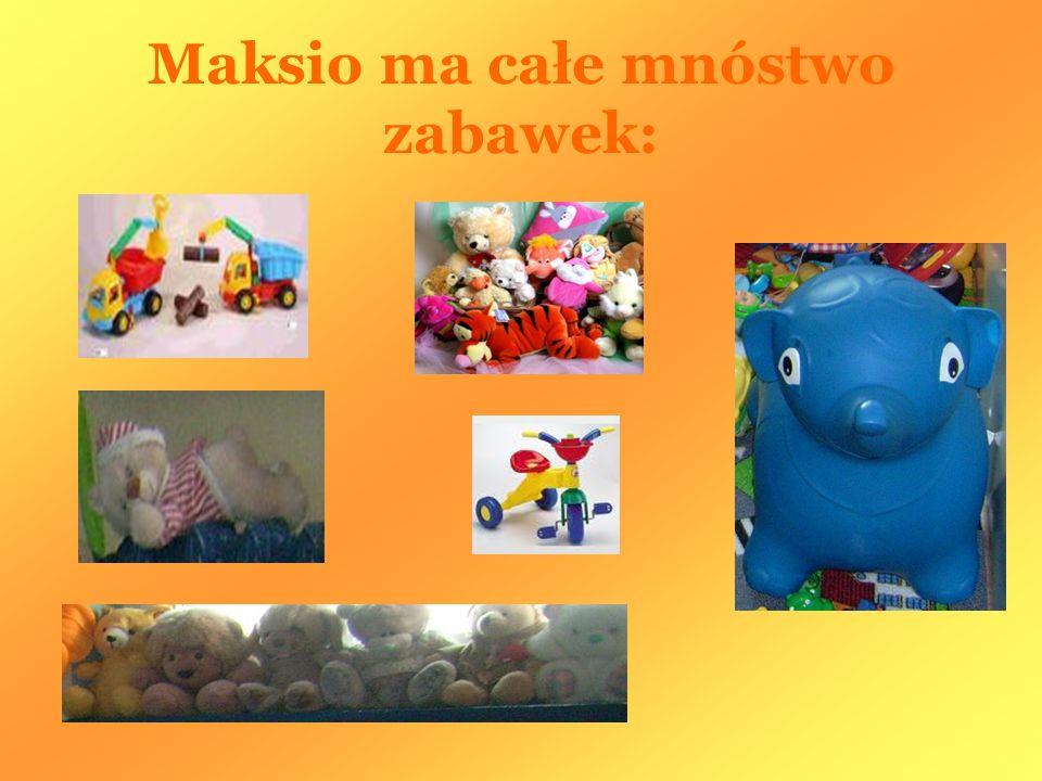 Maksio ma całe mnóstwo zabawek: