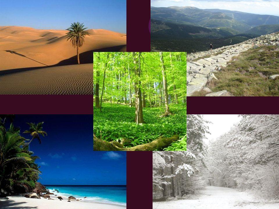 Natura w najszerszym znaczeniu to świat, wszechświat.