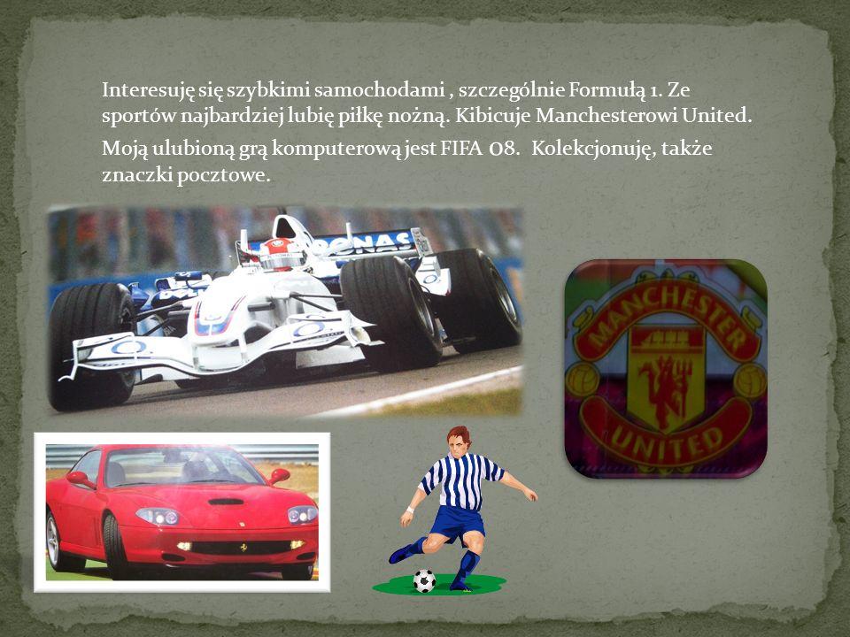 Interesuję się szybkimi samochodami, szczególnie Formułą 1. Ze sportów najbardziej lubię piłkę nożną. Kibicuje Manchesterowi United. Moją ulubioną grą