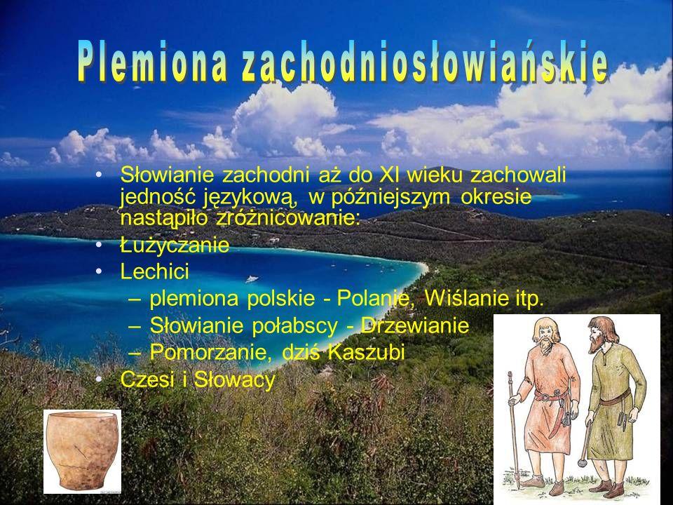 Słowianie zachodni aż do XI wieku zachowali jedność językową, w późniejszym okresie nastąpiło zróżnicowanie: Łużyczanie Lechici –plemiona polskie - Po