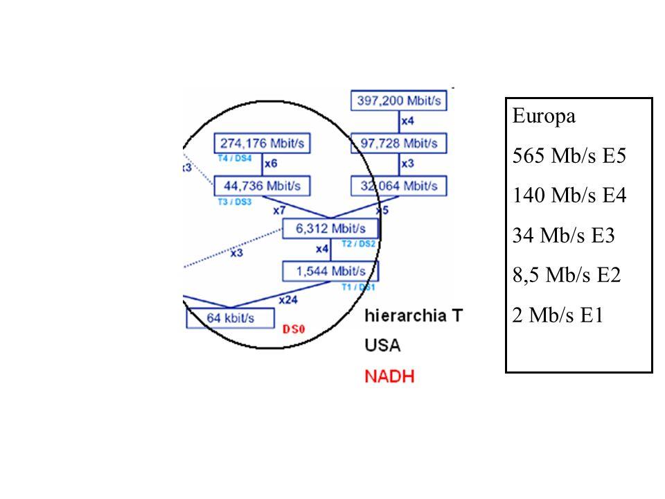 Europa 565 Mb/s E5 140 Mb/s E4 34 Mb/s E3 8,5 Mb/s E2 2 Mb/s E1