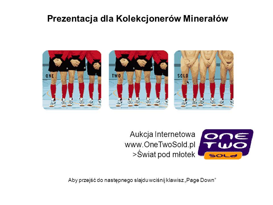 Prezentacja dla Kolekcjonerów Minerałów Aukcja Internetowa www.OneTwoSold.pl >Świat pod młotek Aby przejść do następnego slajdu wciśnij klawisz Page D