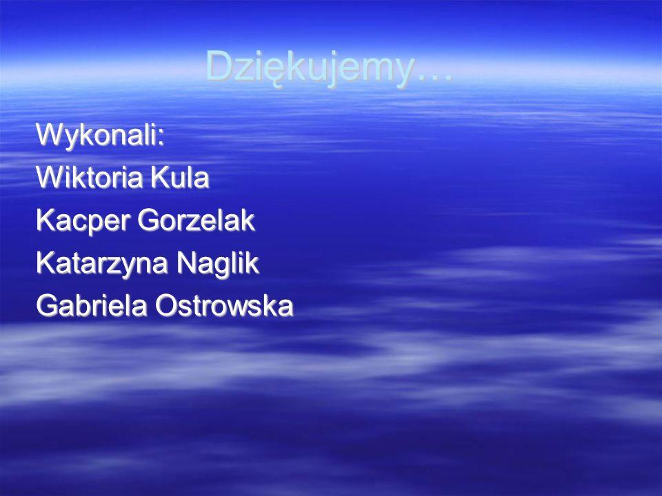 Dziękujemy… Wykonali: Wiktoria Kula Kacper Gorzelak Katarzyna Naglik Gabriela Ostrowska