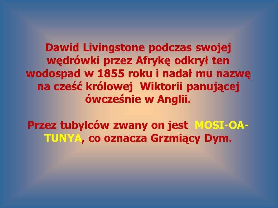 Dawid Livingstone podczas swojej wędrówki przez Afrykę odkrył ten wodospad w 1855 roku i nadał mu nazwę na cześć królowej Wiktorii panującej ówcześnie w Anglii.