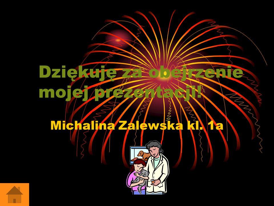 Dziękuję za obejrzenie mojej prezentacji! Michalina Zalewska kl. 1a