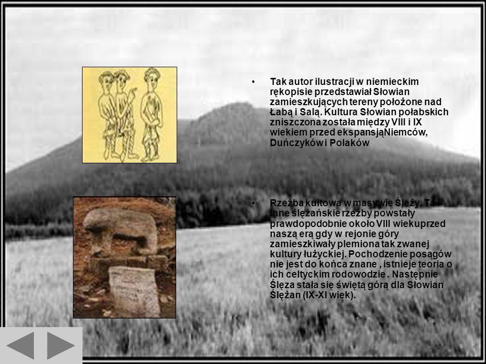 Zdj ę cia Figurka bóstwa Słowiańskiego znaleźiona na wyspie położonej na jeziorze Tollensesee we wschodnich NIemczech. Powstanie rzeźby datuje się na
