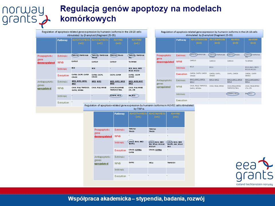 Współpraca akademicka – stypendia, badania, rozwój Regulacja genów apoptozy na modelach komórkowych