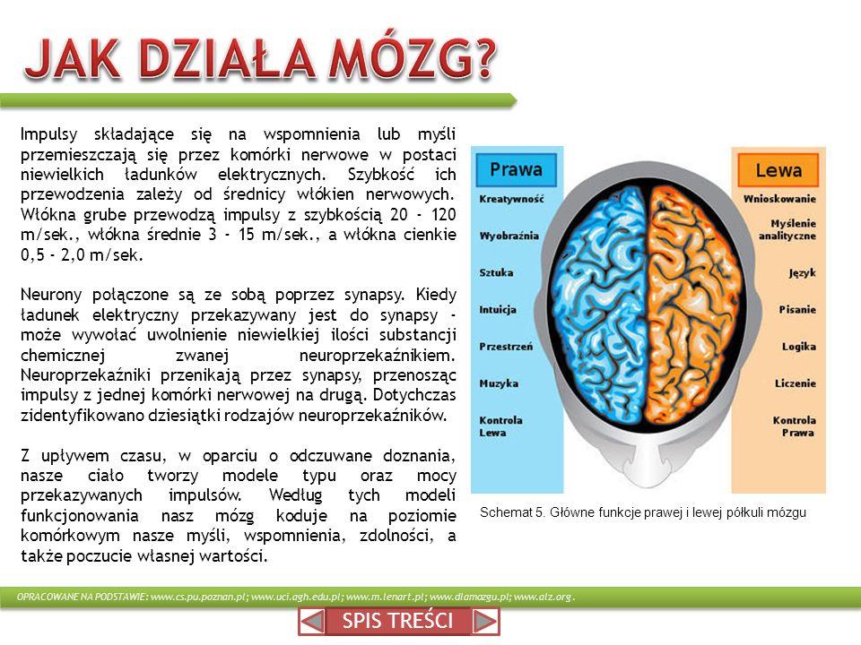 Impulsy składające się na wspomnienia lub myśli przemieszczają się przez komórki nerwowe w postaci niewielkich ładunków elektrycznych. Szybkość ich pr