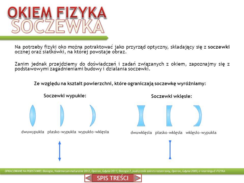 Na potrzeby fizyki oko można potraktować jako przyrząd optyczny, składający się z soczewki ocznej oraz siatkówki, na której powstaje obraz. Zanim jedn