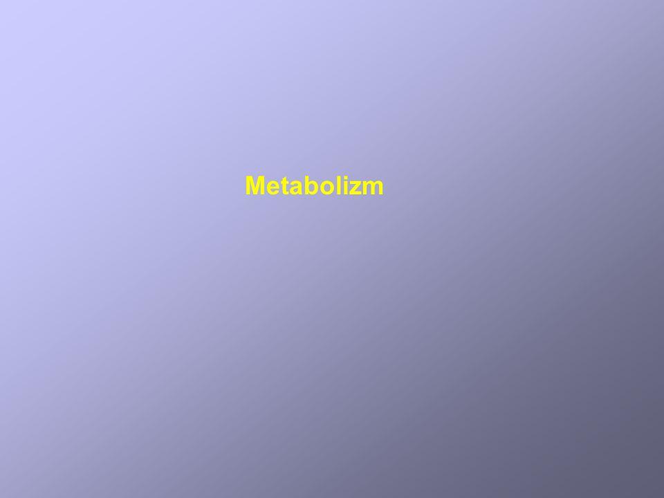 Katabolizm alternatywnych źródeł węgla kwasy tłuszczowe