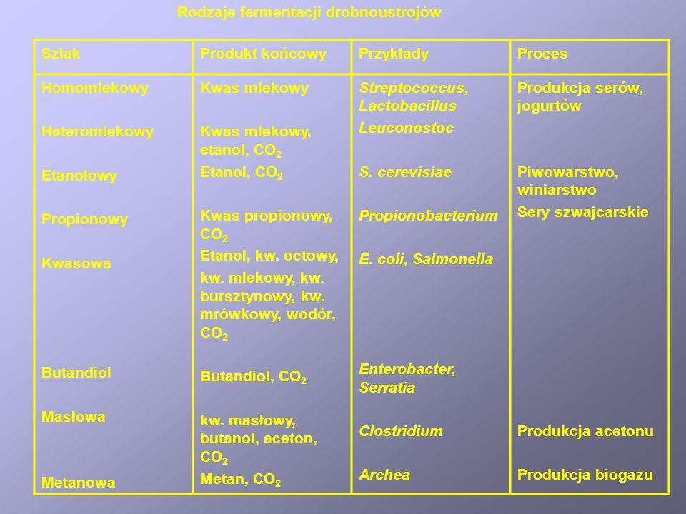 SzlakProdukt końcowyPrzykładyProces Homomlekowy Heteromlekowy Etanolowy Propionowy Kwasowa Butandiol Masłowa Metanowa Kwas mlekowy Kwas mlekowy, etanol, CO 2 Etanol, CO 2 Kwas propionowy, CO 2 Etanol, kw.