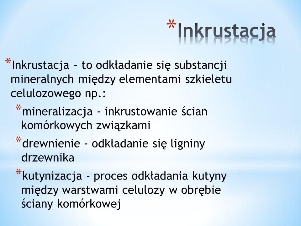 * Adkrustacja – jest to odkładanie się substancji mineralnych na powierzchni pierwotnej ściany komórkowej.