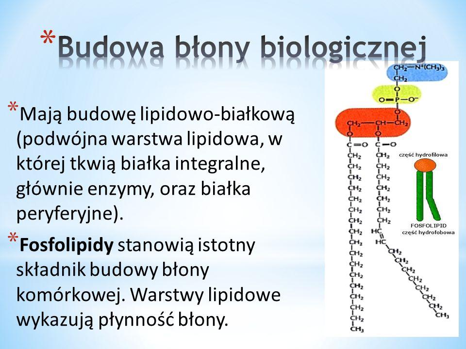 * Cholesterol umiejscawia się w organizmie np.w błonach biologicznych – w środowisku hydrofobowym.
