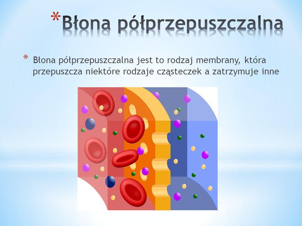 * Receptory – przekazywanie sygnałów * Wzmacnianie – spektryna * Transport: * egzocytoza i endocytoza * kanały błonowe i przenośniki