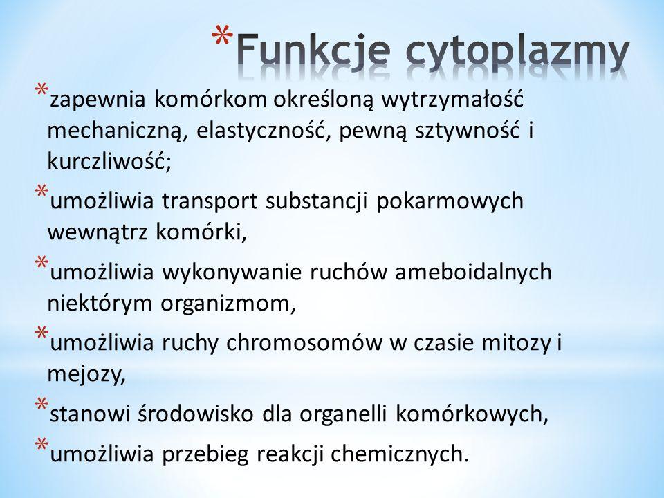 * Rotacyjny – cytoplazma płynie w jednym kierunku wokół wakuoli, inaczej nazywany cyklozą.