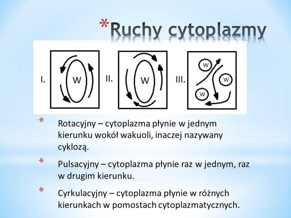 * Plazmoliza to zjawisko odstawania protoplastu od ściany komórkowej.