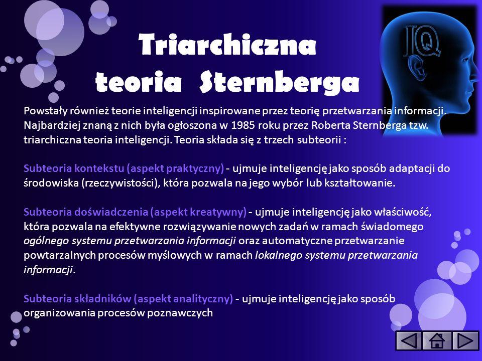 Powstały również teorie inteligencji inspirowane przez teorię przetwarzania informacji. Najbardziej znaną z nich była ogłoszona w 1985 roku przez Robe