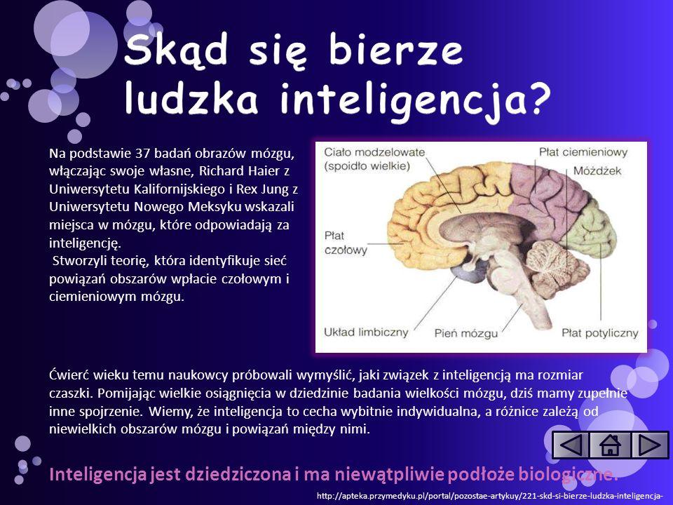 http://pl.wikipedia.org/wiki/Test_inteligencji To test w założeniach mierzący poziom inteligencji.
