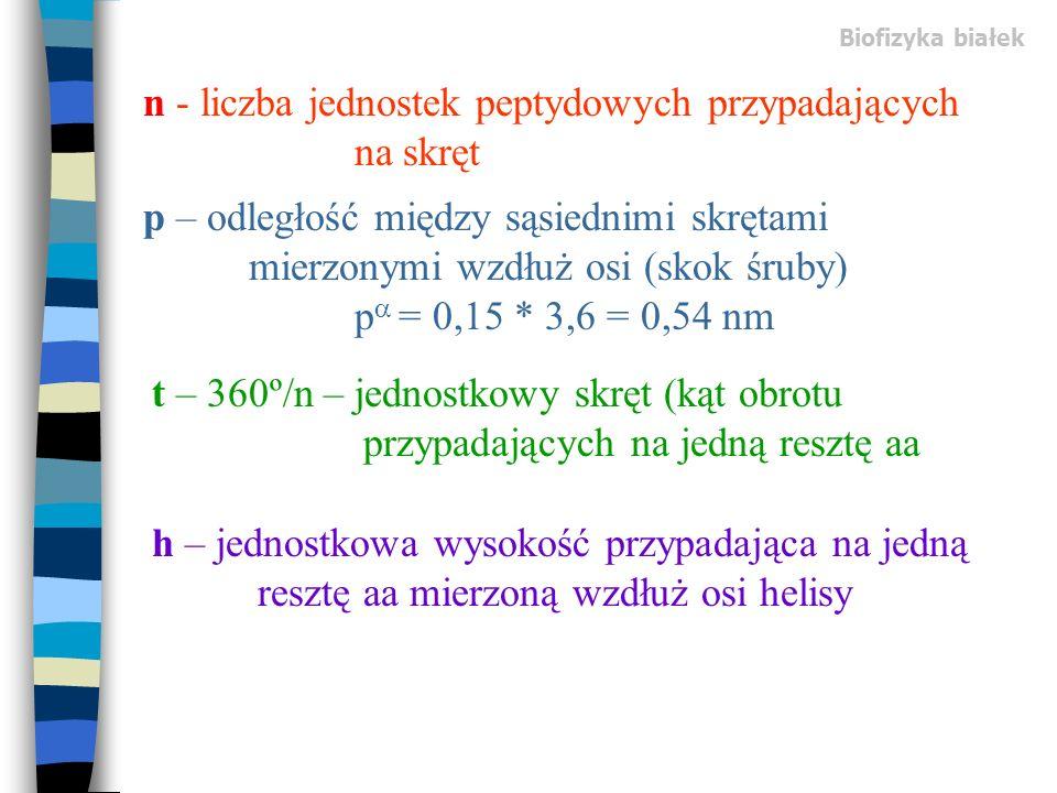 p – odległość między sąsiednimi skrętami mierzonymi wzdłuż osi (skok śruby) p = 0,15 * 3,6 = 0,54 nm n - liczba jednostek peptydowych przypadających n