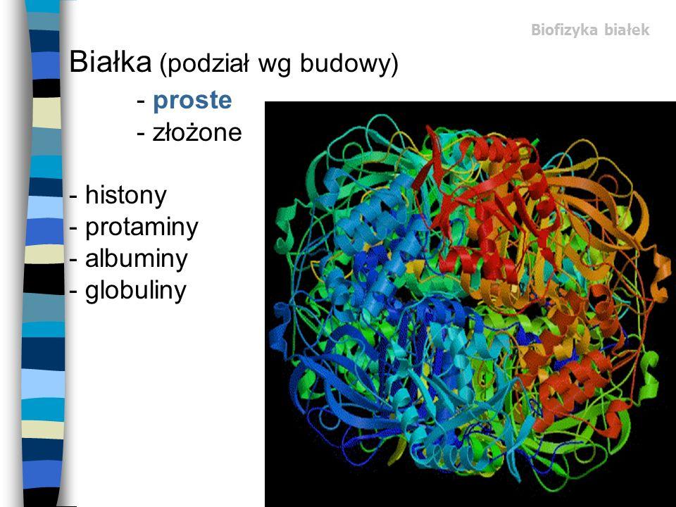 Biofizyka białek Białka (podział wg budowy) - proste - złożone - histony - protaminy - albuminy - globuliny