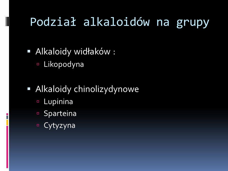 Podział alkaloidów na grupy Alkaloidy widłaków : Likopodyna Alkaloidy chinolizydynowe Lupinina Sparteina Cytyzyna