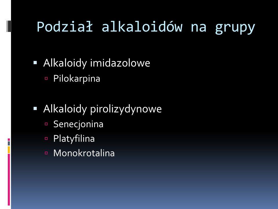 Podział alkaloidów na grupy Alkaloidy imidazolowe Pilokarpina Alkaloidy pirolizydynowe Senecjonina Platyfilina Monokrotalina