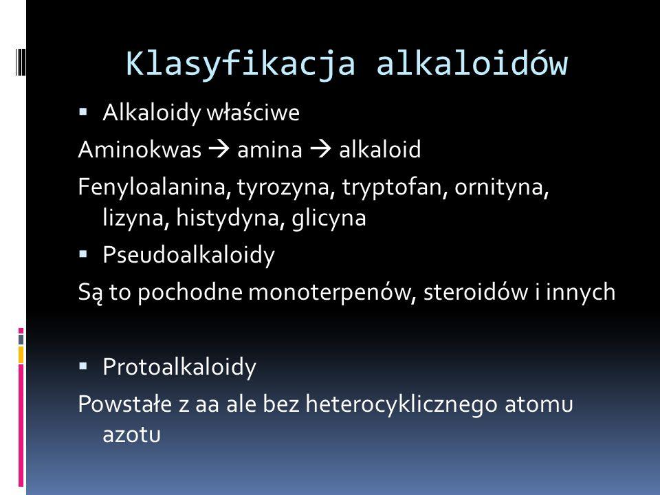 Klasyfikacja alkaloidów Alkaloidy właściwe Aminokwas amina alkaloid Fenyloalanina, tyrozyna, tryptofan, ornityna, lizyna, histydyna, glicyna Pseudoalk